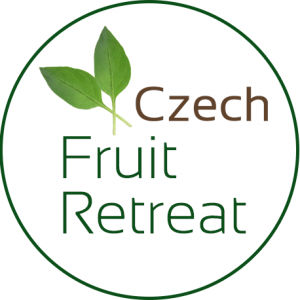 fruit and detox retreat